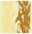 wheat field seamless pattern vector image