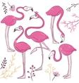 Set of funny hand drawn flamingos vector image