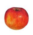 Watercolor colored pencils apple vector image vector image