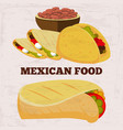 popular mexican food burito and dinner on grunge vector image