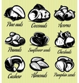 set symbols patterns of different seeds nuts vector image