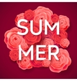 Summer Pink Roses on Dark Background vector image