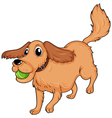 A dog playing with the ball vector image