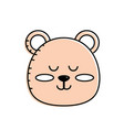 teddy bear boy head animal wild vector image