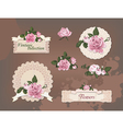 vintage collection of beautiful roses vector image vector image