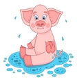 Cute pig in a puddle sits and smile on water vector image