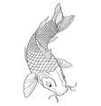 Koi Fish2 vector image