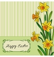 Card with easter daffodil in center and frame vector image