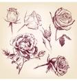 hand drawn roses set vector image vector image