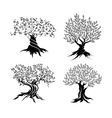Olive trees silhouette icon set vector image vector image