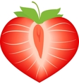 strawberry in form heart vector image