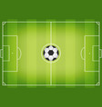 soccer field with football ball in center soccer vector image