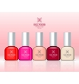 Nail Polish Professional Series Women accessories vector image