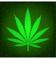 green hemp sign vector image