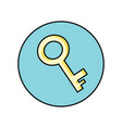 key icon in flat vector image