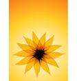 Sunflower on yellow background vector image