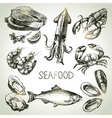 Hand drawn sketch set of seafood vector image