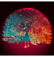 Beautiful Hand drawn Peacock bird vector image
