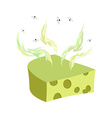 Cheese dorblu Piece of cheese with a bad smell and vector image