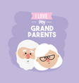 nice grandparents head with celebration design vector image