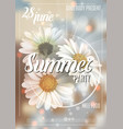 summer background with chamomile and delicate vector image