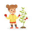 sweet little girl picking tomatoes in the garden vector image