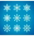 Snowflakes winter vector image