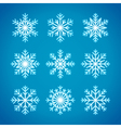 Snowflakes winter vector image