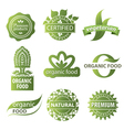 plant ecological logo vector image