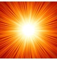 Sunburst background vector image vector image