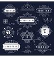 Set luxury monogram template flourishes vector image