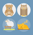 sleep animals icon gift toy vector image