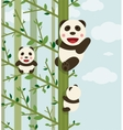 Kawaii Bears in Forest vector image vector image
