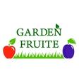 garden fruite symbol vector image