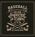College baseball team emblem vector image