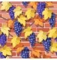 Seamless vine on the brick wall vector image