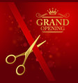 Grand opening with red ribbon and vector image