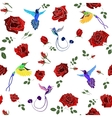 Exotic colibri birds with rose flowers colorful on vector image