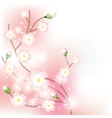 Tree blossom brunch vector image