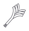 leek line icon sign on vector image