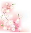 tree blossom brunch vector image