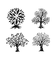 Beautiful oak trees silhouette set vector image vector image