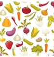 Ecological farming production classical vegetables vector image