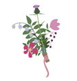 bouquet from wild flowers vector image