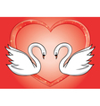 white swans and red heart - card vector image