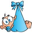 Baby Boy In Bundle vector image