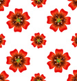 Beautiful orange flower Seamless floral pattern vector image