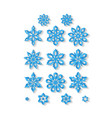 set of carved snowflakes isolated on white vector image