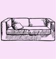 sofa pillow vector image
