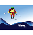 Winter sports skiing vector image vector image